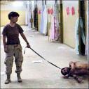 Torture at Abu Gharaib